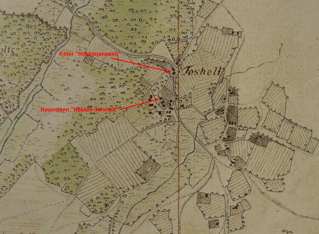 Farms in Torsholt in Vogteikarte from 1793